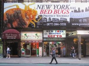 Punaise de lit New York