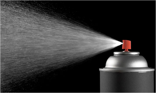 Spray insecticide punaise de lit