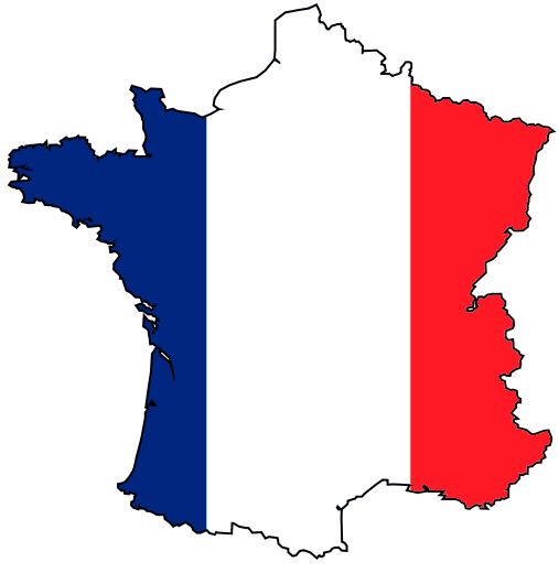 La France est la cible de la punaise de lit ! Villes et campagnes, sans distinction.