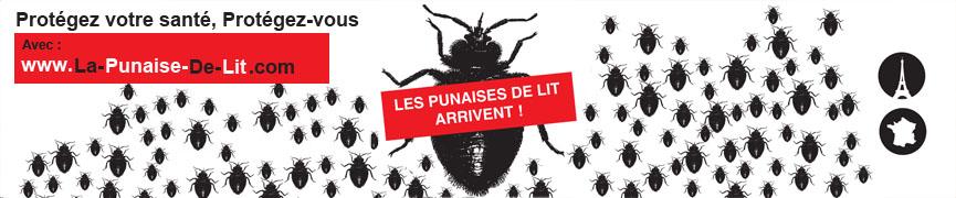 PUNAISE DE LIT – Infos gratuites et de référence sur les punaises de lit