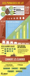 Infographie sur les punaises de lit