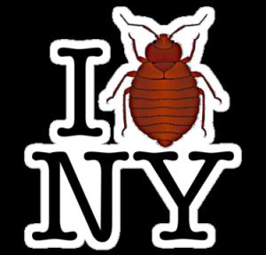 Les punaises aiment New York !